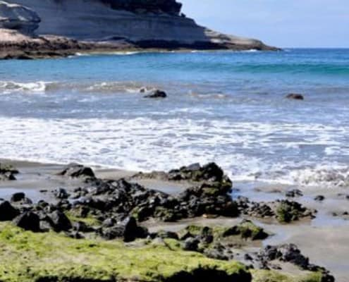 son-de-mar